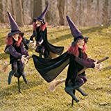BeneGreat 2021 Staked Halloween Witches - Staked Yard Witches Halloween Witches Set of 3 Halloween Decorations Outdoor Scary Creepy Waterproof Outdoor Home Halloween Decor
