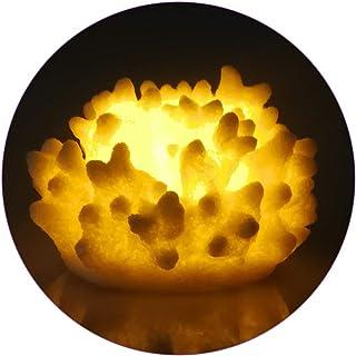 Amazon.es: velas con pilas