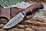 Bigcat Roar Hunting...image