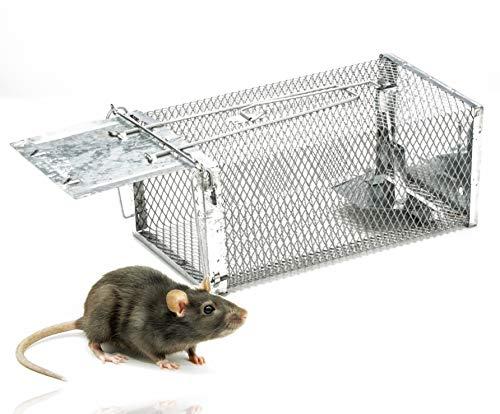 1x ratonera viva - trampa de jaula de 29 cm reutilizable y viva - trampa para ratón y rata - trampa para ratas trampa caja de alambre trampa