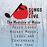 Felix Loves Mickey Mouse, Legos and Centereach, New York
