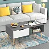 HOMFA Coffee Tables for Living Room TV Stand, Wooden Console Table Sofa Side Table 2 Tier with Storage Shelf and 1 Drawer, Modern Furniture for Home Office, Gray
