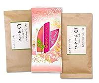 てらさわ茶舗 熊本茶&知覧茶・鹿児島茶飲み比べセット・さくら玄米茶 ゆしかざ 山荒茶 3袋セット