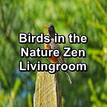 Spring Bird Sounds Nature Sounds