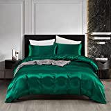 AiMay 3 Piece Satin Duvet Cover Set Bedding Sets Luxury 1800 Rich Silk Silky Super Soft Solid Color Reversible Honeymoon Stain-Resistant Wrinkle Free (Queen, Green)