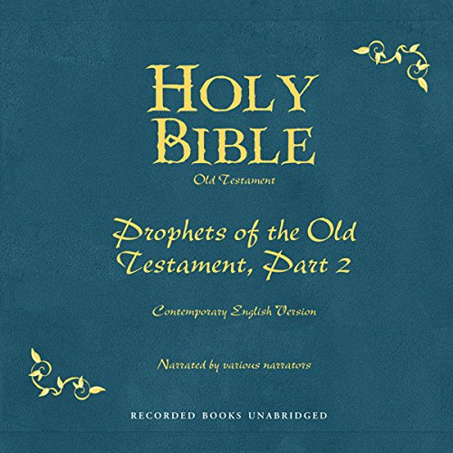 Holy Bible, Volume 15 audiobook cover art
