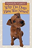Image of Why Do Dogs Have Wet Noses?