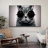 ZWBBO Leinwand Gemälde Dekorative Malerei Wandbild Leinwandbilder Bilder Katzen Brillen Sonnenbrillen wallpape Poster und Drucke Für Wohnzimmer Malerei Auf Leinwand Wandkunst-50x70cm