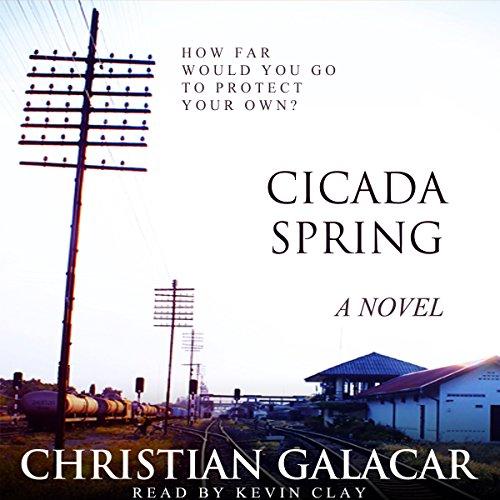 Cicada Spring cover art