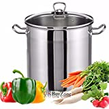 20 Litre Large Deep Stainless Steel Cooking Stock Pot Casserole Glass Lid Induction
