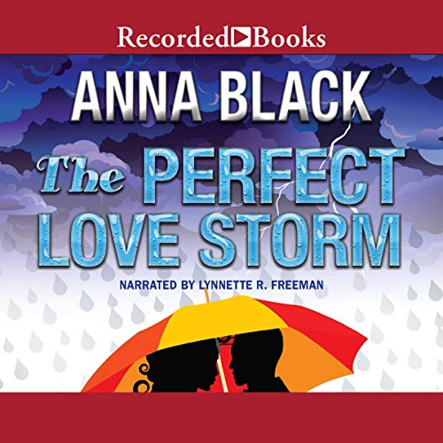 The Perfect Love Storm Audiobook By Anna Black cover art
