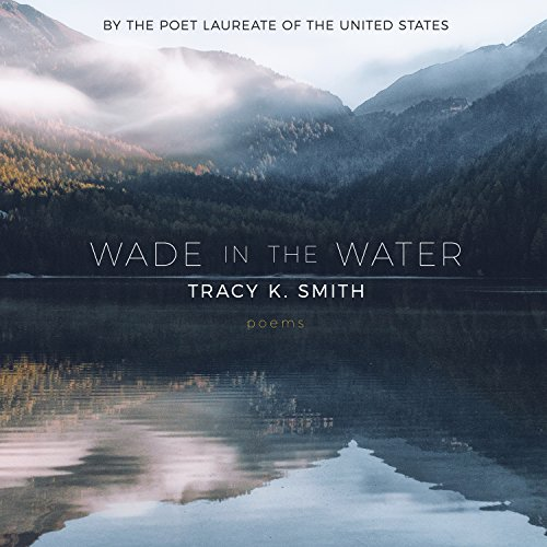 Couverture de Wade in the Water: Poems