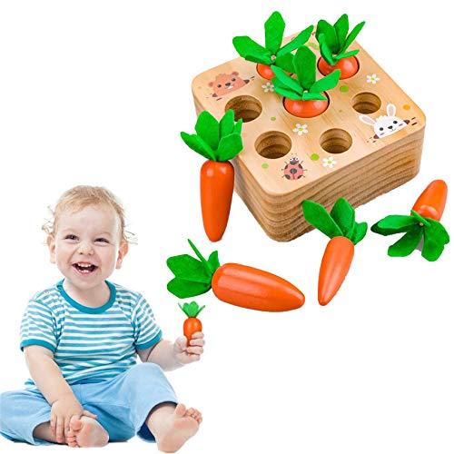 Sunshine smile holzspielzeug Montessori,Karotte Spielzeug,sortierspiel Holz für Kinder,motorik Spielzeug...