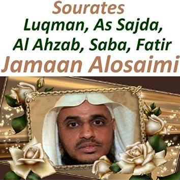 Sourates Luqman, As Sajda, Al Ahzab, Saba, Fatir (Quran - Coran - Islam)