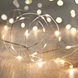 LED ライト ワイヤーライト 電飾 電池 式 クリスマス ツリー 飾り MANATSULIFE (60LED室外適用リモコン付き, ウォームホワイト)