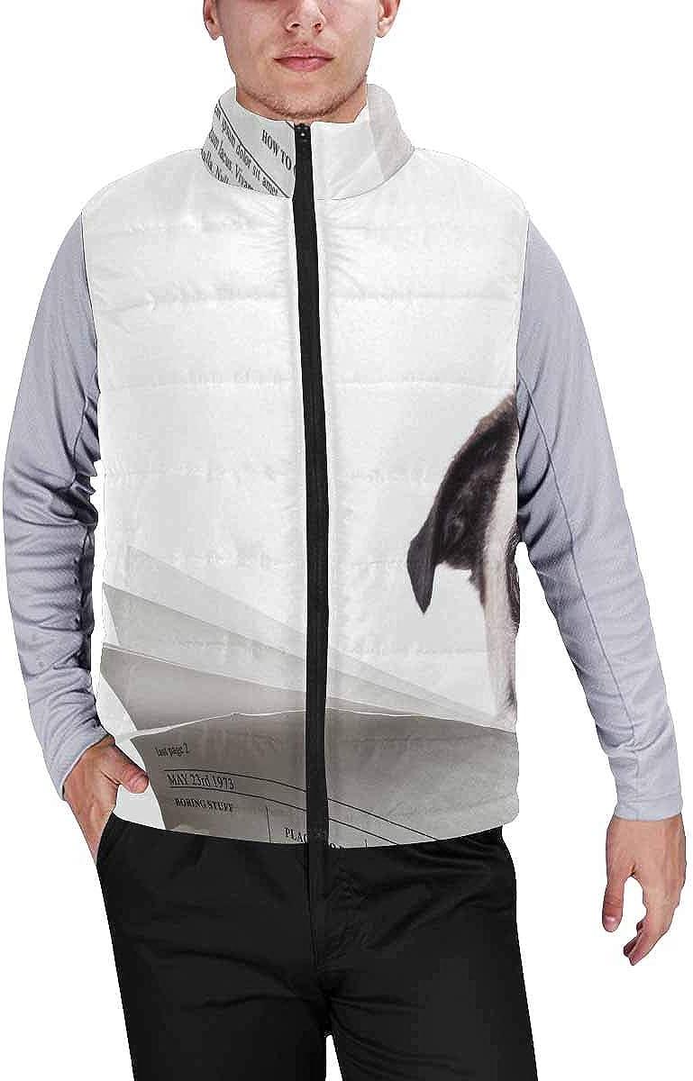 InterestPrint Men's Lightweight Vest Softshell for Camp Pretty Daisy Background