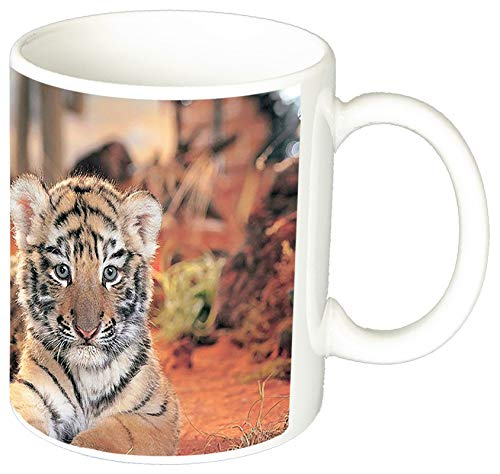 MasTazas Gatitos Gatos Kittens Cats S Tasse Mug