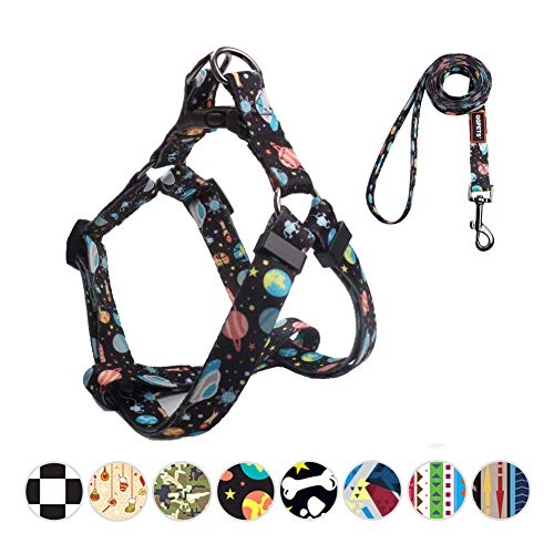 QQPETS Adorable Prevent Escape Proof Dog Harness and Leash Set No-Pull Dog Harness for Medium Puppy Breed Adjustable Chest:19-26