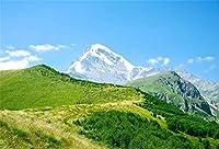 Qinunipoto 背景布 撮影 スタジオ撮影用背景布 专业级摄影 背景ボード 自然の風景 コーカサス山脈 夏 緑と青空 ワイルドウォーク 緑の風景 おもしろい 多様パターン ビニール 背景布 3.5m x 2.5m
