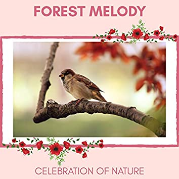 Forest Melody - Celebration of Nature