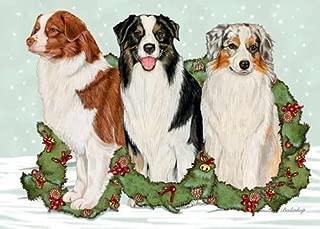 Best australian shepherd christmas cards Reviews