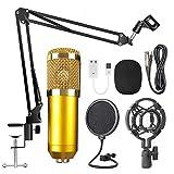 Docooler Studio Micrófono condensador con brazo de micrófono