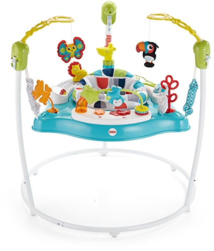 FisherPrice Color Climbers Jumperoo