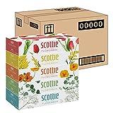 スコッティ ティシュー フラワーボックス 320枚(160組) 5箱 ×12パック入り