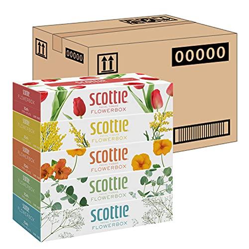 日本製紙クレシア スコッティ ティシュー フラワーボックス 320枚 160組 5箱 ×12パック入り