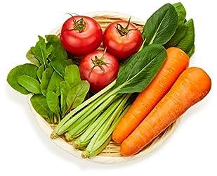 国内産 Tokyo Organic 有機野菜 おまかせセットS 1パック 500g
