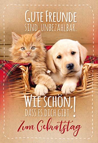 Geburtstagskarte Hund und Katze, Geburtstagskarte, im Format DIN B6 176 x 125 mm, im Format DIN B6 176 x 125 mm, Klappkarte inkl. Umschlag, Motiv: Katze/Hund