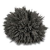 Eisenpulver (magnets4you) - 100g | Eisenspäne für magnetische Experimente, sichtbare Magentfeldkennlinien | Magnetismus erklären für z.B. Schule/Unterricht/Physik