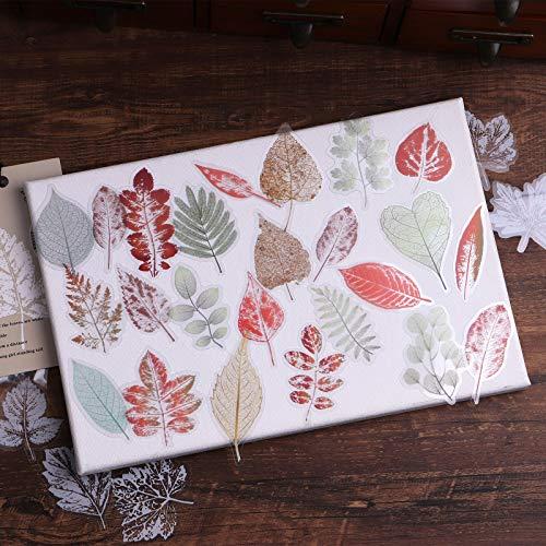 Lychii Pegatinas para álbumes de recortes, 240 pegatinas de PVC para decoración con patrón de venas de hojas, pegatinas adhesivas de diseño natural para álbumes de recortes de manualidades