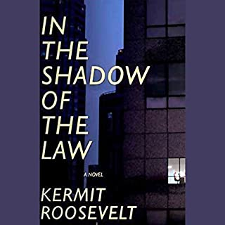 In the Shadow of the Law audiobook cover art