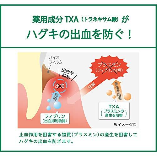 [医薬部外品]GUM(ガム)歯周プロケアデンタルペースト<歯周病予防歯みがきハグキケア高濃度フッ素配合1450ppm>ノーマルタイプ90グラム(x1)