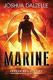 Marine (Terran Scout Fleet)