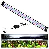 Hengda 38W LED Acuario,Iluminación LED para Acuarios Plantados Lámpara LED para Peceras,Iluminación para Acuarios Lámpara de Planta de Acuario con Soporte Ajustable para Acuario de 120cm-140cm