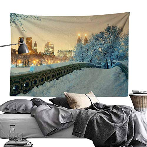 gygygys Hanging Tapestries Winter,Central Park Winter Season with Skyscrapers and Snow Bow Bridge Manhattan New York,W90 xL60 Sleeping Tapestry