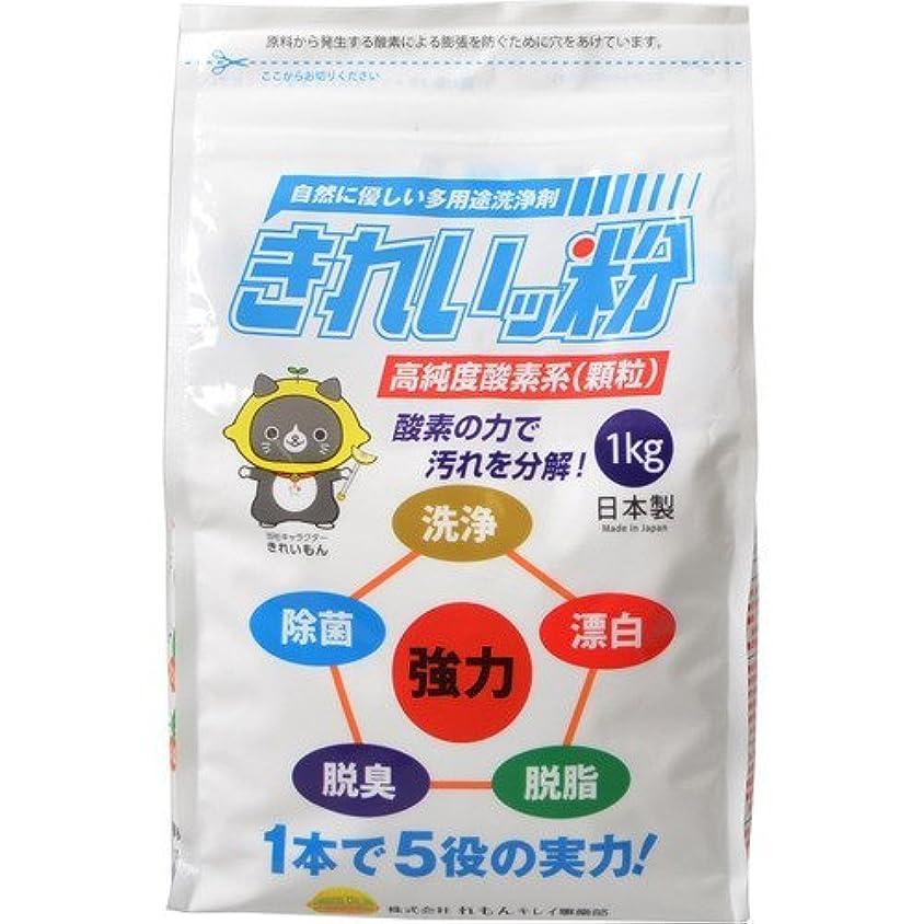 検索エンジンマーケティング貞大声で過炭酸ナトリウム(酸素系)洗浄剤 きれいッ粉 詰替え用袋タイプ 1kg×3個セット