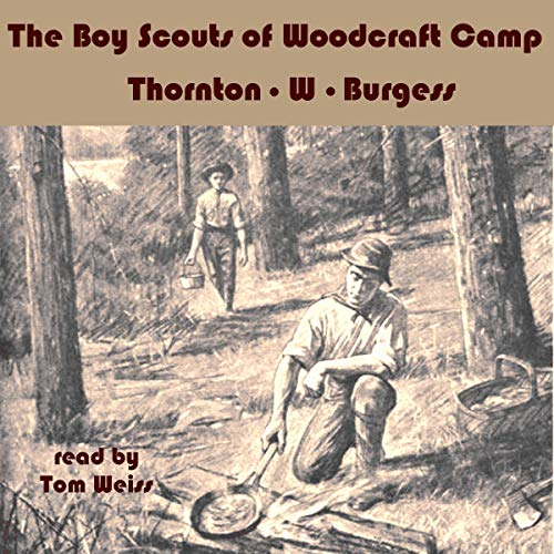 The Boy Scouts of Woodcraft Camp cover art