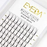 EMEDA Premade Volume Eyelash Extensions Mixed Tray 0.10 C D Curl 5D Premade Fans Eyelash Extensions Long Stem Pre Made Fanned Russian Volume Lash Extensions (5D .10 D Curl 9-15mm Mix Tray )
