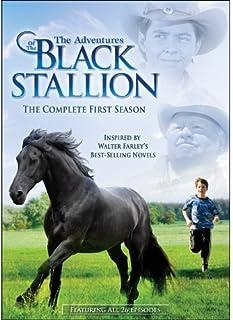 The Adventures of The Black Stallion: Season 1 by Echo Bridge Home Entertainment