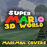 The Bullet Bill Express (From 'Super Mario 3D World') (Marim