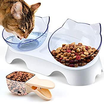 KOTONAMI Bol Doubles pour Chat, Petit Chat Bol incliné à 15 ° Support de Gamelles Antidérapant, Plastique Léger Animaux Bols Facile à Digestion Bol à Aliments pour Chats [Ne Vomit Plus] (Transparent)