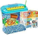 Penn Plax Rite-Bite Educational Tank - For a Betta Education - A Perfect 1st Fish Tank For Children