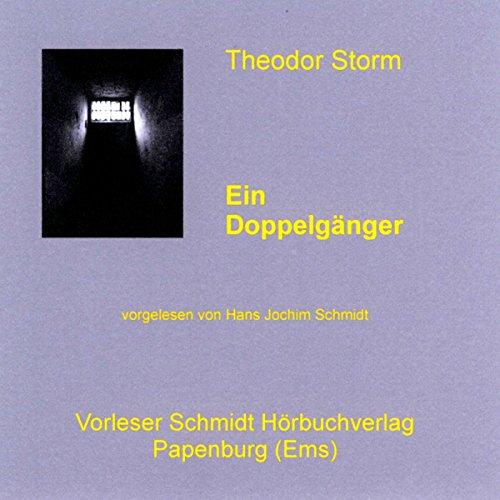 Ein Doppelgänger audiobook cover art