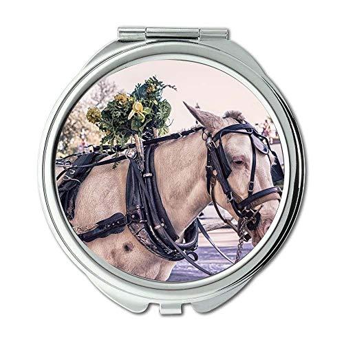 Yanteng Spiegel, Schminkspiegel, Tierwagen, Taschenspiegel, tragbarer Spiegel