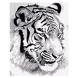 Pintura por números,White animal tiger Pintura por Números para Adultos Bricolaje Lienzo Preimpreso Pintura al óleo Arte Decoración del Hogar Reducir la Ansiedad,40cmX50cm(sin marco).