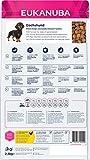 Zoom IMG-1 eukanuba breed specific alimento secco