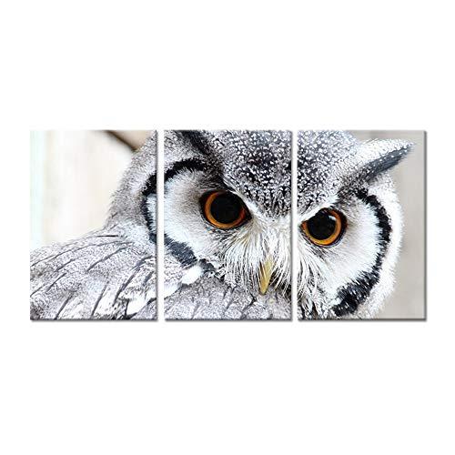 WLEZY HD-druk canvasschilderij 3 stuks canvas uil met grote ogen vogel dier zwart-wit fotoprint op canvas voor moderne home slaapkamer decoratie muurkunst